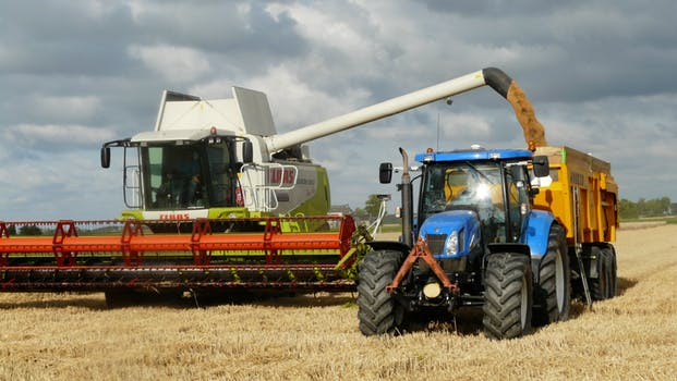 harvest-grain-combine-arable-farming-163752